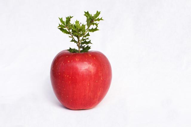 アップル社のステップメールから学ぶ既存客へのアプローチ6ステップ
