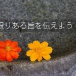【集客方法】お客様を惹き付けるアイデア(希少性)
