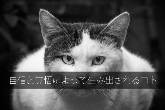 キャッチコピーのアイディア!タイトル&キーワード(信頼感)