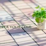 お客様との関係性作りを植物で例えてみる