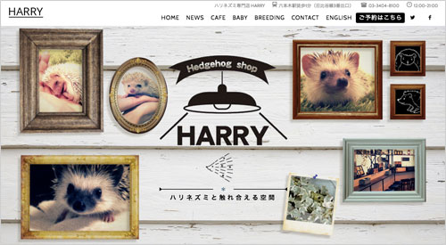 harry-webtop