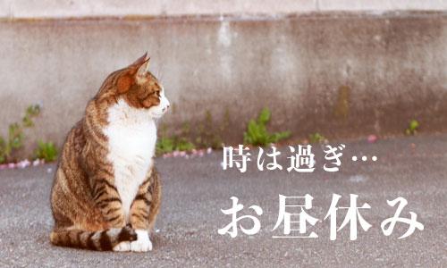 shougo-161111